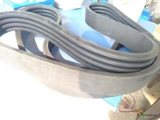 Shafit Belt 84B